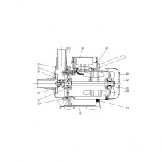 Vis de corps de pompe Basic (5,5x40mm) - lot de 4
