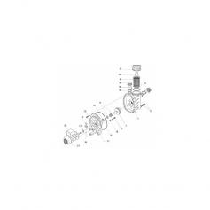 Joint de presse-étoupe pompe Speck 21-40/55*