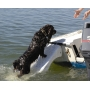 Rampe de sauvetage pour chiens SKAMPER RAMP