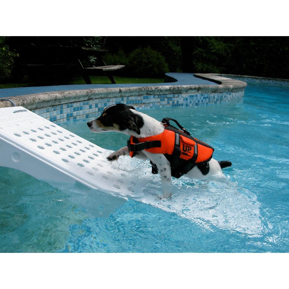 Rampe de sauvetage piscine pour animaux skamper ramp for Piscine pour chien