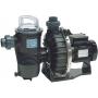 Pompe filtration piscine Pentair CHALLENGER