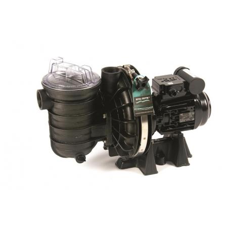 Pompe filtration piscine STA-RITE 5P2R