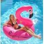 flamant rose piscine