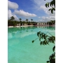 Colorant piscine Bleu Aquacouleur