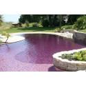 Colorant piscine couleur lavande