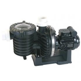 Pompe de filtration STA-RITE